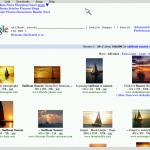 google-pic-search