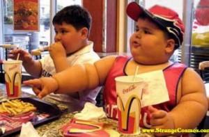 mcdonalds-fat1